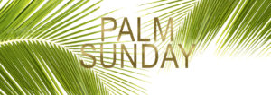 Palm Sunday - All Easter Flower orders are due @ Faith Journey United Methodist Church | Clay | New York | United States